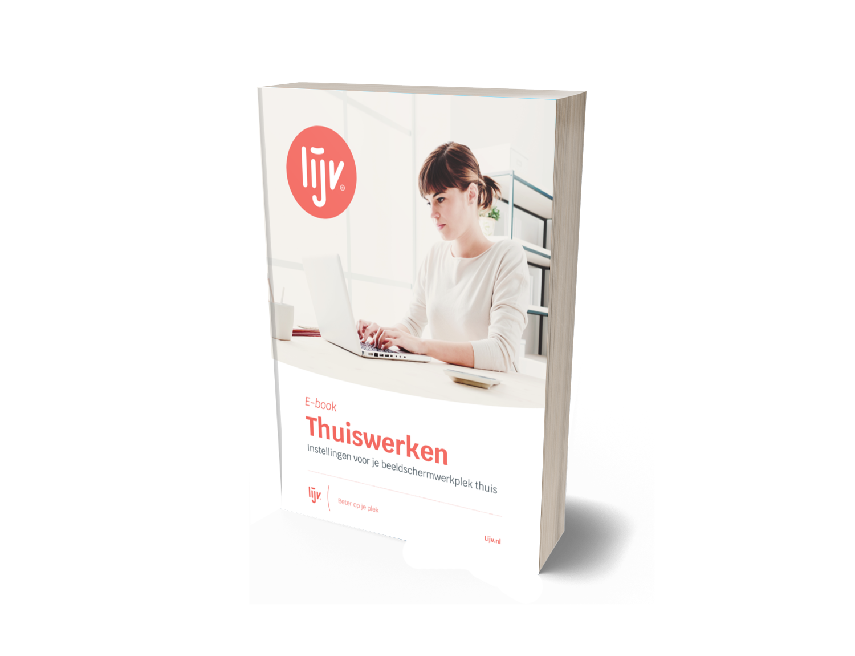 E-book Thuiswerken